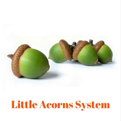 Little Acorns System