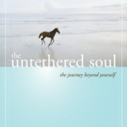 Untethered Soul Review